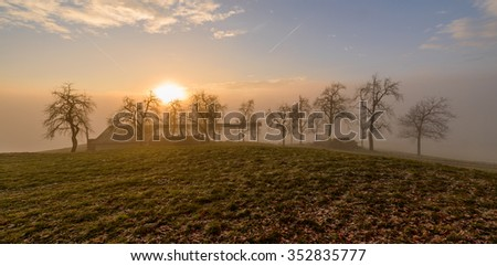 Misty sunrise over the farmlands of Slovenia. Sunlight is penetrating the trees and bushes.