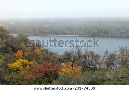 Misty trees on the river slope in a nature reserve - stock photo