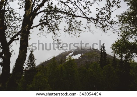 Misty Ural mountains in cloudy weather. National Park Yugyd-Va, Russia - stock photo