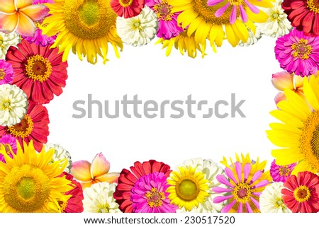 mix flowers frame isolated white background - stock photo