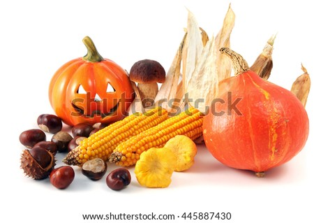 mix of autumn harvest products like smiling pumpkin, chestnuts mushrooms and sweetcorn on white isolated background