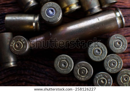 Mix of Empty Bullets / Rounds