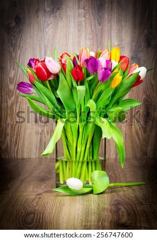 Mix of tulips flowers - stock photo