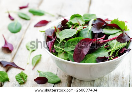 mix salad Romaine, arugula, spinach, mizuna, chard, oak salad on a white wood background. tinting. selective focus - stock photo