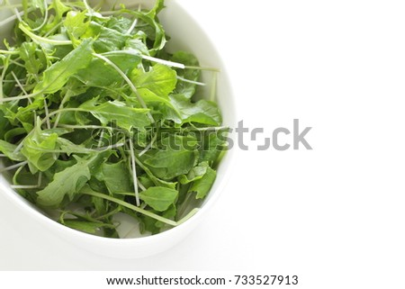 mixed baby leaf for healthy salad image