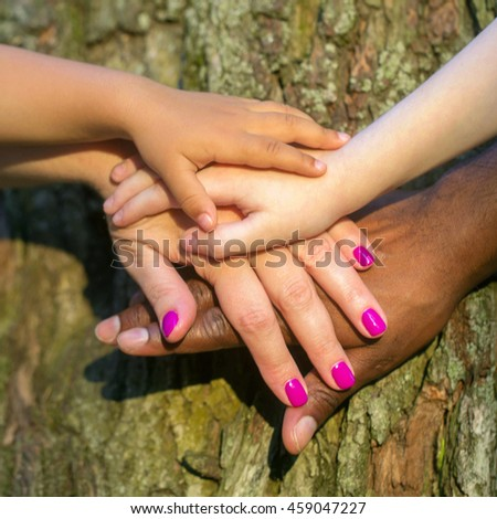 Mixed family concept. Four hands of the mixed race family on the tree bark - baby, child, mother and father at sunset light.
