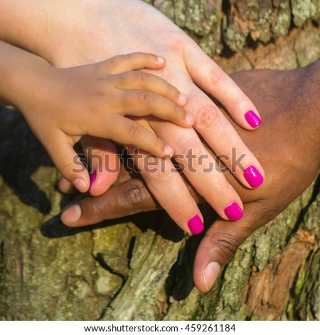 Mixed family concept. Three hands of the mixed race family on the tree bark - baby, mother and father at sunset light.
