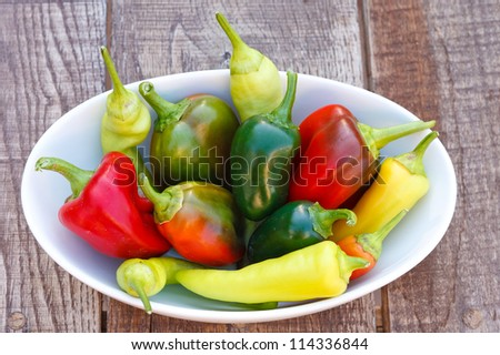 Mixed Fresh Peppers in Bowl - stock photo