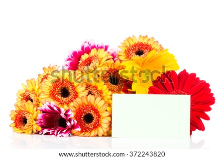 Mixed gerber flowers and a card isolated on white background - stock photo