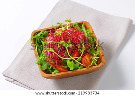 Mixed green salad with pea and beetroot sprouts - stock photo