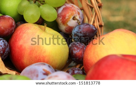 Mixed healthy vegetables on wooden background
