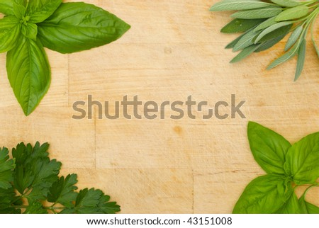 mixed herb frame - stock photo