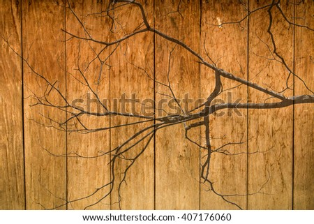 Mixed pattern old wood with silhouette dead tree - stock photo