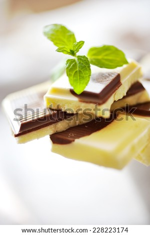 mixed white and brown milk chocolate bars with fresh mint