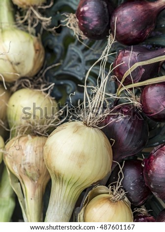 Mixture of raw onions