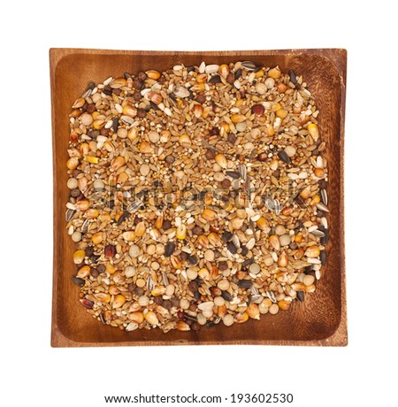 Mixture of seeds for pigeons - stock photo