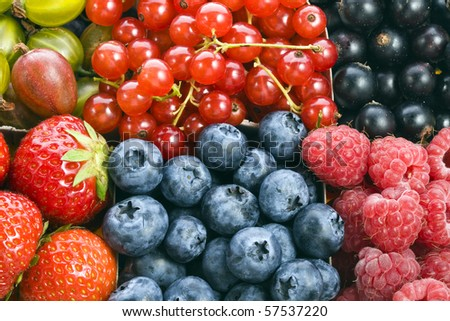 mixture set of ripe berries Background