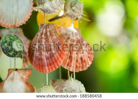 Mobile made from variety shells - stock photo