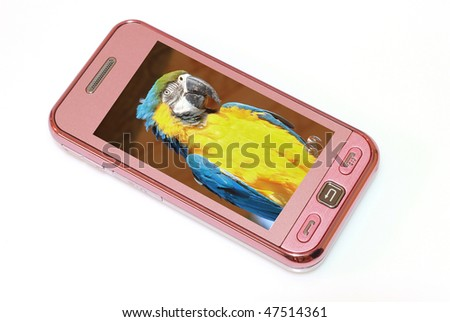 mobile phone with parrot's photo