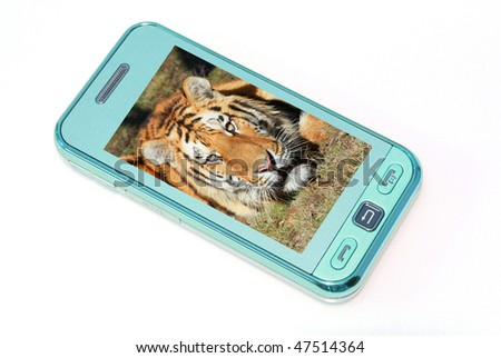 mobile phone with tiger's photo - stock photo