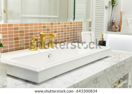 Modern Bathroom Sink with Gold Faucet