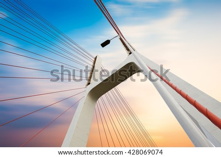 Modern bridge cables, twilight landscape. - stock photo