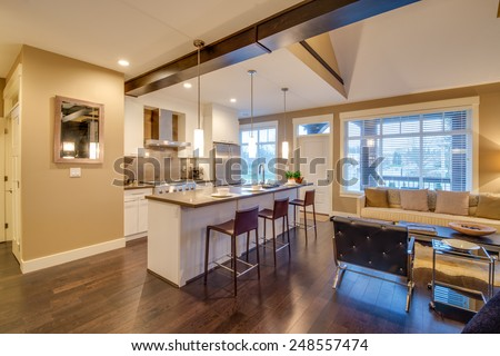 Modern, bright, kitchen and living room in a luxury house. Interior design. - stock photo