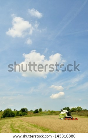 Modern combine harvester in the wheat field during harvesting with blue sky - stock photo