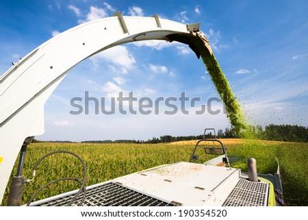 Modern combine harvester unloading green corn into the trucks - stock photo