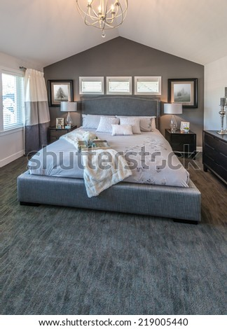 Modern comfortable, nicely decorated and elegant luxury master bedroom. Interior design. Vertical. - stock photo