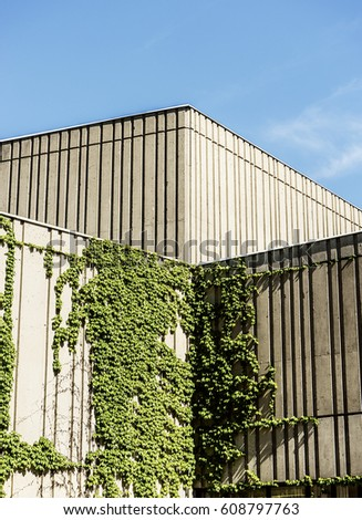 Modern Concrete building with vines on it