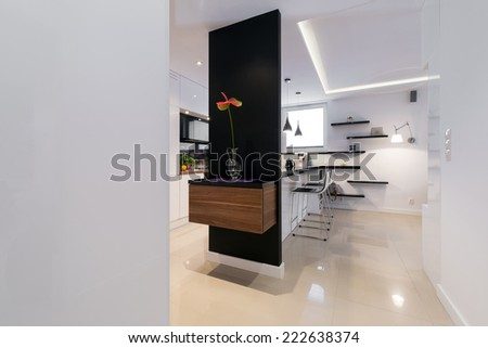 Modern corridor in luxury apartment in black and white style - stock photo
