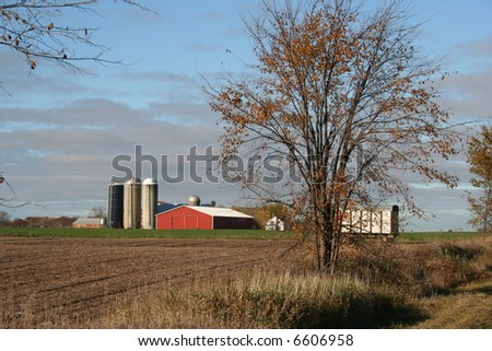 modern dairy farm - stock photo