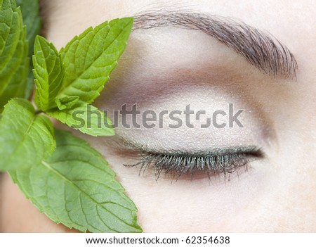 Modern fashion makeup of a female eye and fresh mint - macro shot - stock photo