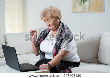 Modern grandma talking on the skype with grandson - stock photo