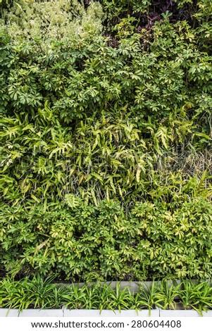 Modern green wall decoration - stock photo