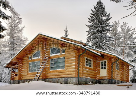 Modern handmade log house with large windows covered in snow during winter. - stock photo