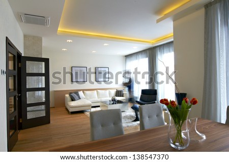 Modern home living and dining room