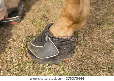 Modern Horse shoe outside - stock photo