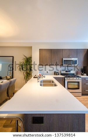 Modern kitchen in luxury house. - stock photo