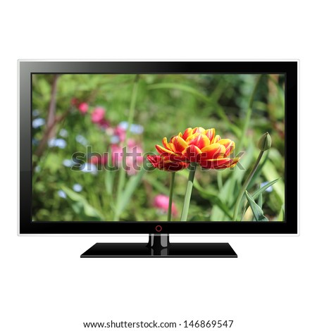 modern LCD monitor isolated on white with flowers in the screen