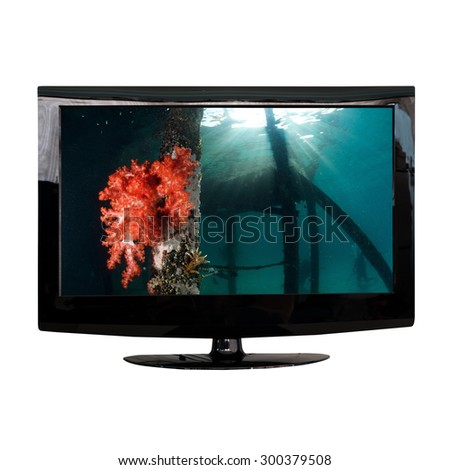 modern LCD monitor isolated on white with photo in the screen