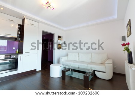 Modern living room interior - stock photo