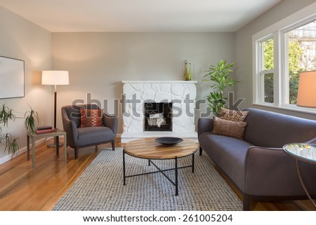 Modern living room interior in mid century home. - stock photo