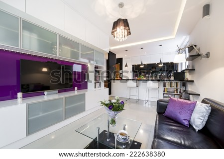 Modern living room with open kitchen in european style - stock photo