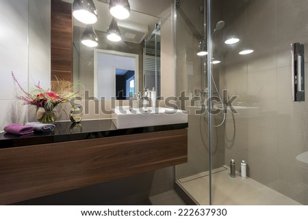 Modern luxury bathroom with shower in european style - stock photo