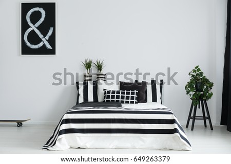 Modern Minimalist Black And White Bedroom With Plants Skateboard