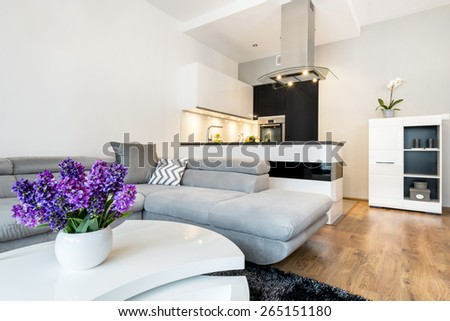 Modern open space living room with black and white kitchen - stock photo
