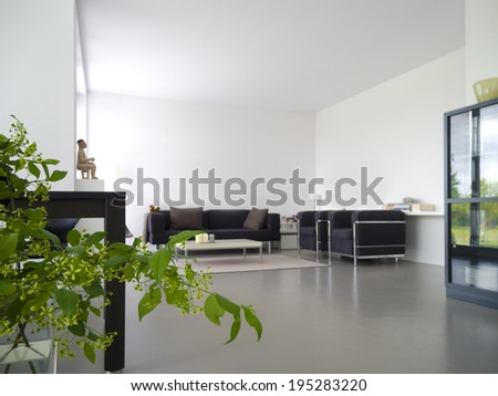 modern private living and dining room with plant in the foreground - stock photo