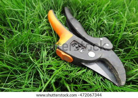 Modern secateurs on the fresh lawn in the sunny garden
